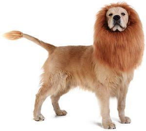 Dog Costume Lion Mane Lion Wig for Medium to Large Sized Dogs Lion Mane Wig for Dogs for Sale in Riverside, CA