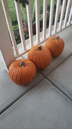 FREE three pumpkins for Sale in Fontana, CA