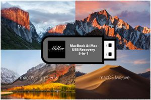 MacOS USB Bootable Recovery Install Boot Drive - Mojave, El Capitan, High Sierra, Sierra, Yosemite for Sale in Chandler, AZ
