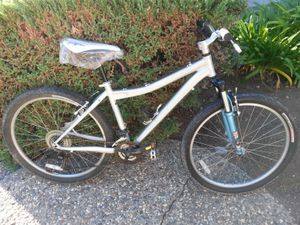 Specialized rockhopper mountain bike medium 17 inch frame brand new langster seat for Sale in Campbell, CA