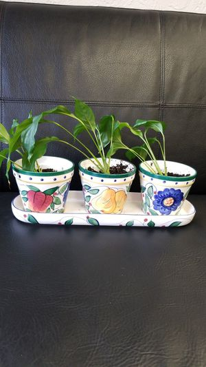 Flower pots for Sale in Vancouver, WA