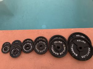 Olympic weights for Sale in Tampa, FL