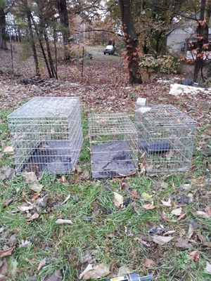 3 cages a small a medium and a large for Sale in Concord, VA