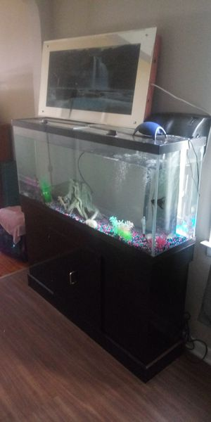 55gal tank with stand and everything in pics for Sale in Lancaster, OH