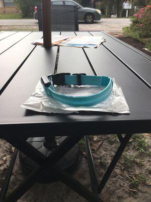 Blue light up collar for Sale in Sanford, FL