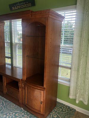 Book case/ entertainment center for Sale in Richmond, VA