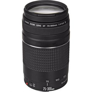 Canon zoom lens for Sale in Vancouver, WA