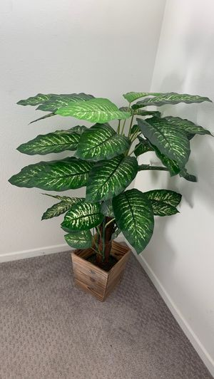 Fake plant for Sale in Lake Elsinore, CA