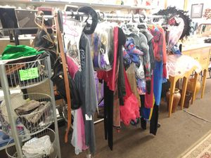 Halloween costumes for the whole family for Sale in Tampa, FL