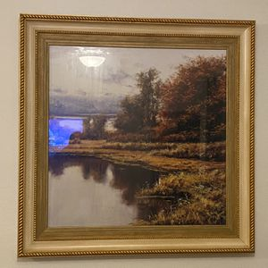 Large Nature Picture Frame for Sale in Orlando, FL