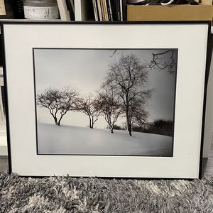 1964 Schenley Park Photography for Sale in Long Beach, CA