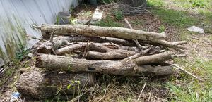 Free oak tree Firewood logs for chimney cookout grill campfire for Sale in Stafford, TX