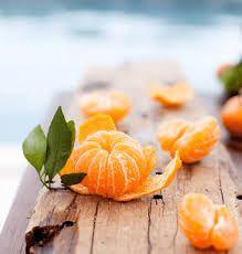 Tangerines grafted trees in 3gal arboles de mandarinas dulces injertadas en 3gal for Sale in Boynton Beach, FL