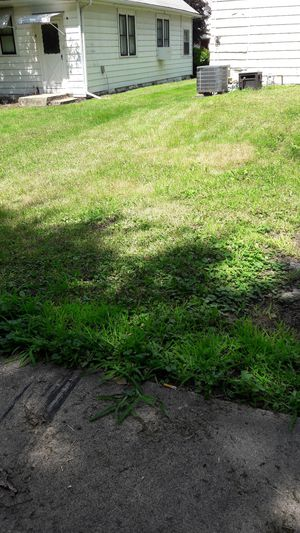 Need Free dirt for Sale in Albert Lea, MN