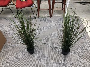 Fake plants for Sale in Aliso Viejo, CA