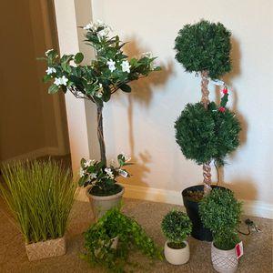 Artificial Plants for Sale in Aliso Viejo, CA