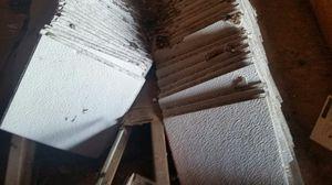 Ceiling Tile for Sale in Kingsport, TN