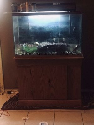 50 gallon tank all lights $50 for Sale in Phoenix, AZ