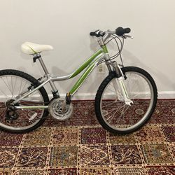 Raven Bicycle 🚲 New! for Sale in Centreville,  VA