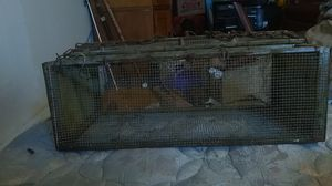 Fish Trap for Sale in Union, MO