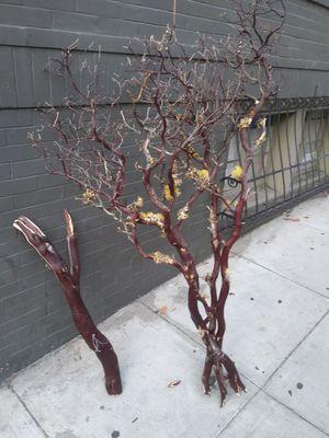 Genuine Manzanita Branches !! for Sale in San Francisco, CA