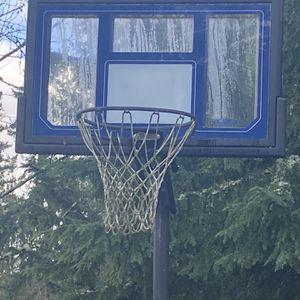 Basketball Hoop for Sale in Eatonville, WA