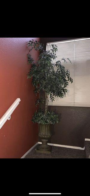 Artificial plants for Sale in Las Vegas, NV
