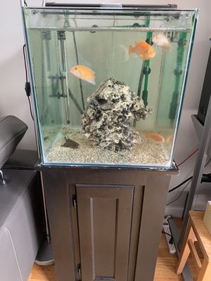 25 gallon fish tank with stand for Sale in Queens, NY