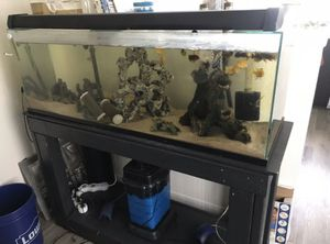 50 gallon fish tank for Sale in Carlsbad, CA