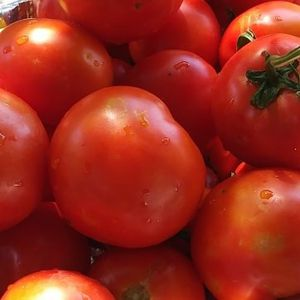 Organic Tomatoe for Sale in West Covina, CA