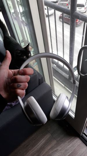 Wireless Beats Headphones for Sale in Denver, CO