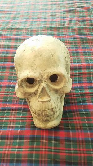 Brand new large skull for Sale in Williamsport, PA