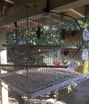 Cage for Sale in Los Angeles, CA