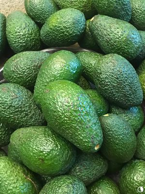 Organic avocados for Sale. for Sale in Riverside, CA