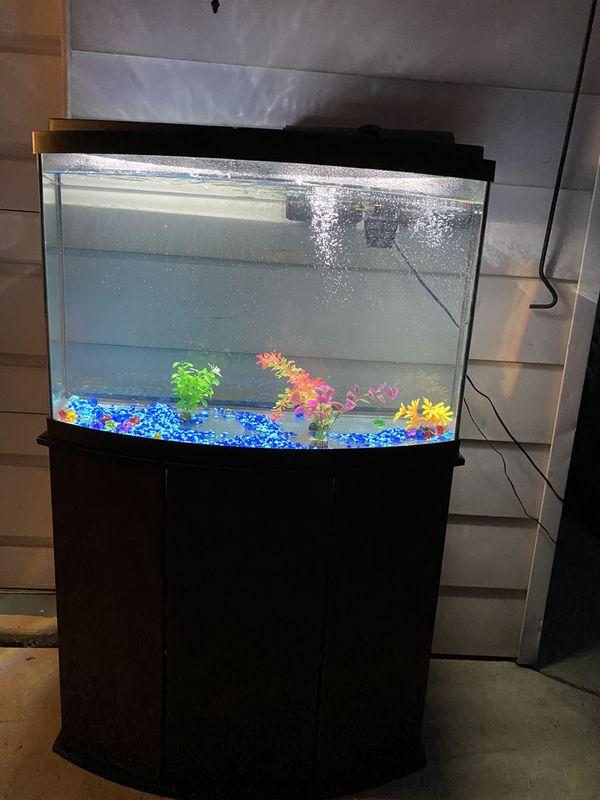 Aquarium big