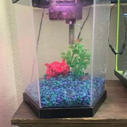 2 Gallon Top Fin Fish Tank Aquarium Color Changing LEDs And Filter for Sale in Phoenix,  AZ