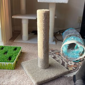 Scratch Post for Sale in Santa Clara, CA