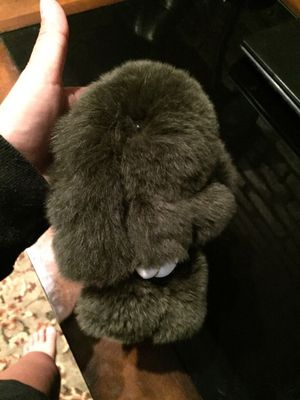 Real fur rabbit for Sale, used for sale  New York, NY