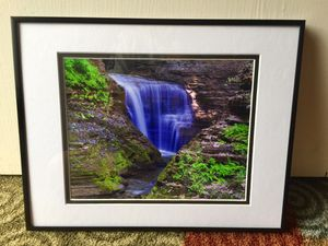 Framed and matted picture taken by me for Sale in Grantsville, WV