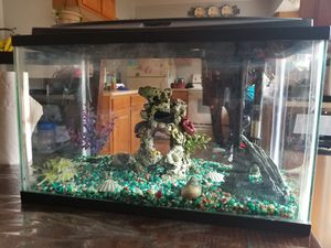 Complete fish tank for Sale in Denver, CO