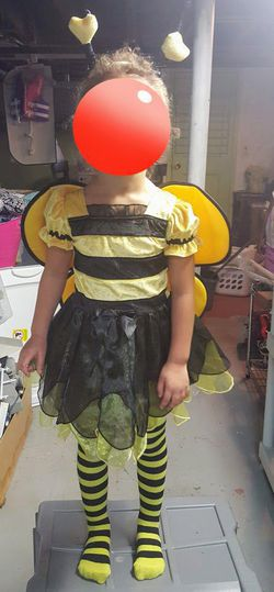 Girls Bumblebee costume/dress up (size 2T) for Sale in Malden,  MA