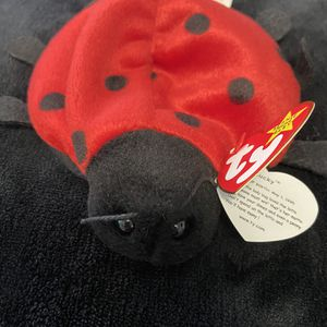 Ladybug Lucky Beanie Baby for Sale in Damascus, OR