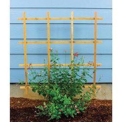 Self-staking Garden Trellises for Sale in Rancho Santa Margarita, CA