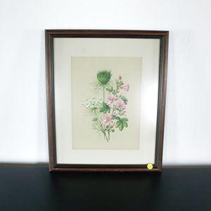 Framed Print of Flowers (1037161) for Sale in San Bruno, CA