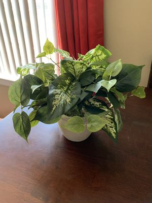 Fake ivy plant for Sale in Tampa, FL