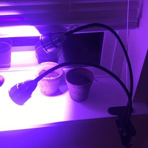 Grow Light for Sale in Tenino, WA