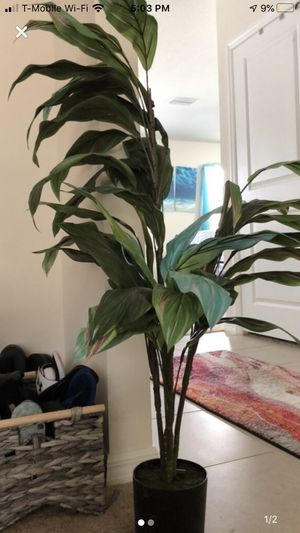 Fake house plant for Sale in Sun City Center, FL