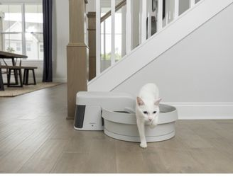 Litter Box for Sale in Lynwood,  CA