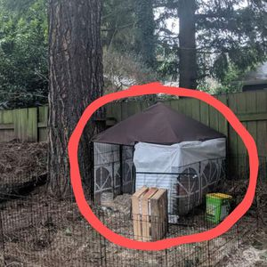 Large Outdoor Kennel And Surrounding Fencing for Sale in Gresham, OR