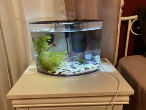 5 gallon fish tank for Sale in Perris, CA